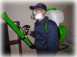Дезинсекция генератором тумана